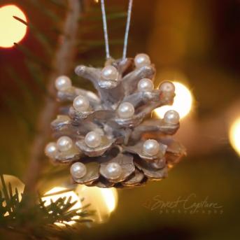 IMG_4290 pinecone.ornament_smsq