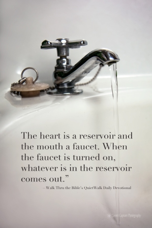 IMG_8749 sink.faucet.quote_smw