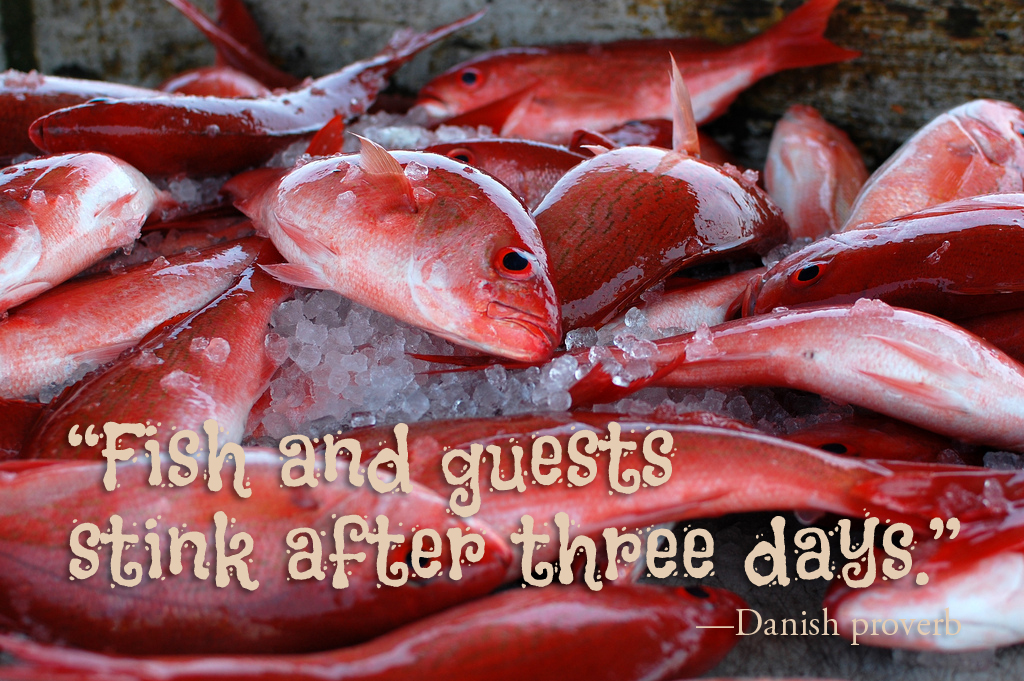 Wisdom Wednesday Fish And Guests Sweet Rains