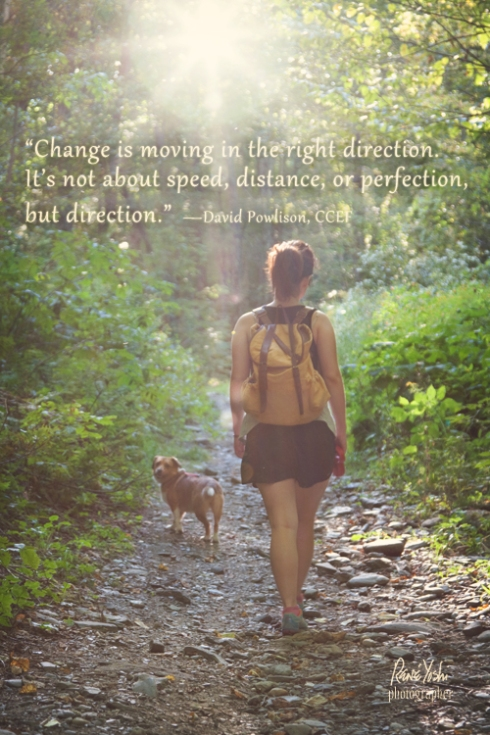 """Change is moving in the right direction.  It's not about speed, distance, or perfection, but direction.""  —David Powlison,"