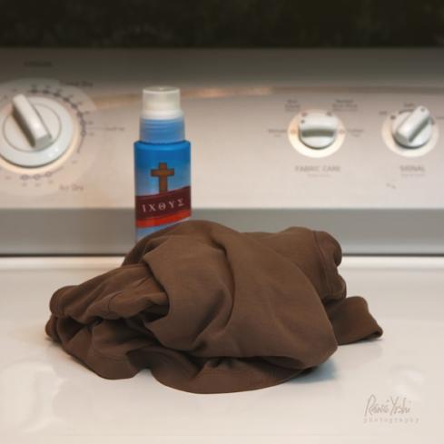 IMG_3016 laundry.stain_smw