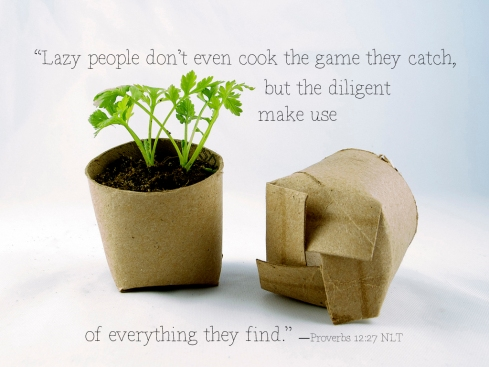 """""""Lazy people don't even cook the game they catch, but the diligent make use of everything they find.""""  —Proverbs 12:27 NLT"""