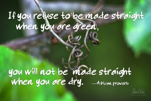 """If you refuse to be made straight when you are green, you will not be made straight when you are dry.""  —African proverb"