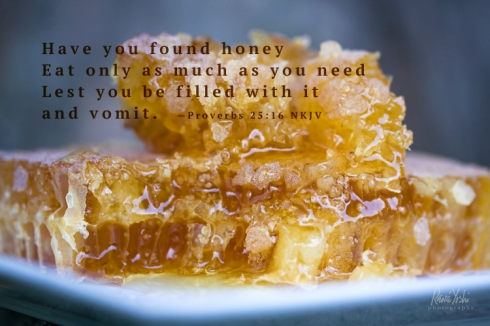 IMG_5172 honeycomb2.qt_smw