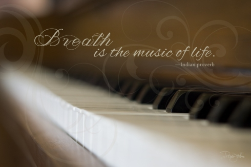 IMG_5774 piano.keys_qt