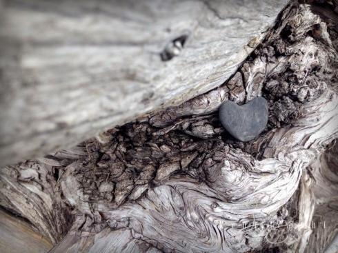 IMG_0426ip driftwood.heart_smw