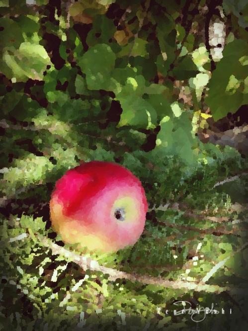 IMG_5024 apple.painted_smw